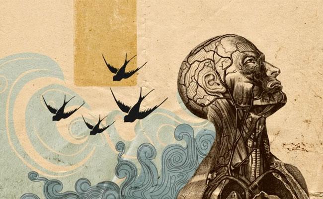 mente-natura